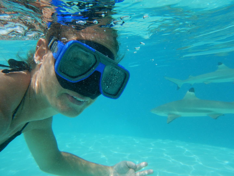 Snorkelen met haaien en roggen op Moorea » Reismeisje